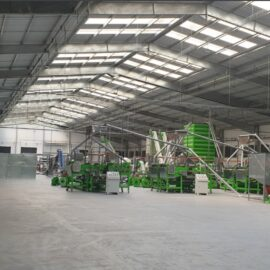 Automatic cashew processing plant 100 TPD