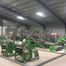 automatic cashew processing plant 20 tpd