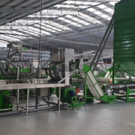 Automatic cashew processing plant 30 TPD