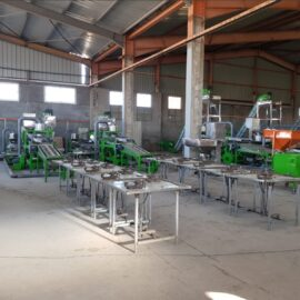 automatic cashew processing plant 3tpd