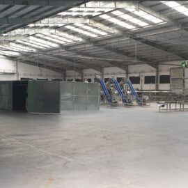 Automatic cashew processing plant 50 TPD